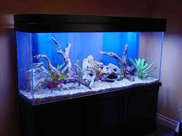 Funny Fish Tank Decorations Artificial Coral Reef Aquarium Decorations Tv Aquarium Decor