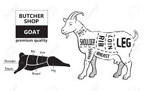 Goat Chart Vector Illustration Goat Cuts Diagram Or Chart Goat Black Silhouette