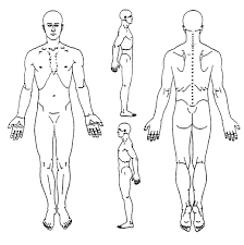 Pictures body diagram for charting drawing art gallery rh drawinglics back pain chart full human body diagram