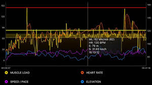 My Emg Chart A Buyers Guide To Electromyography Systems For Sport