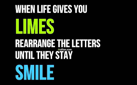 Humorous Inspirational Quotes Adorable 48 Latest Funny Inspirational Quotes Most Funniest Motivational