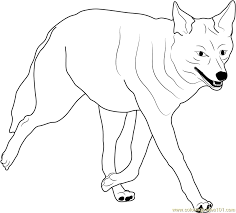 Small Picture Coyote Walking Coloring Page Free Coyote Coloring Pages
