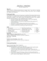 Resume Examples Monster Resume Examples Monster Nice Monster Resume