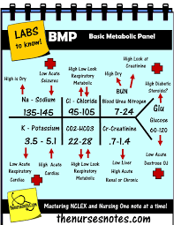 Bmp Chem7 Fishbone Diagram Explaining Labs From The Blood