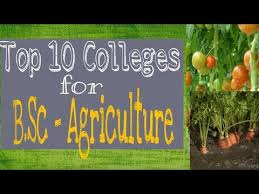 Colleges Of Agriculture Top Colleges For B Sc Agriculture Best College For Bsc