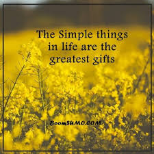 Positive Life Quotes Life Sayings Simple Life Things Are Greatest Mesmerizing Simple Life Quotes