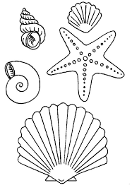 Download and Print seashell and starfish coloring pages | Riscos 1 ...