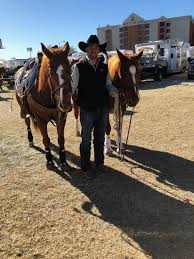 long s professional rodeo cowboys ociation career earnings are curly over 1 million 1 165 327 since 2003 and he s on a rush to pete in his
