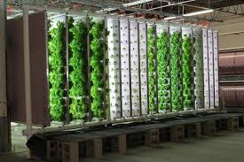 Small Picture hydroponic garden design ideas vertical garden ideas vegetable