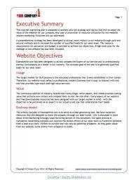 Microsoft Office Example 006 Marketing Plan Example Target Market Template Microsoft
