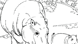Baby Hippo Coloring Pages Hippo Coloring Sheets Hippopotamus