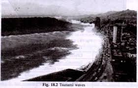 natural and man made disaster and their impact on environment tsunami waves