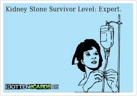 I get a 4mm kidney stone and go the er. F26bd8e998a676d6a893c083f70ffb4c Jpg 420 294 Pixels Kidney Stones Funny Kidney Stones Kidney