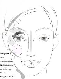 above is a template i created that you can print out and use to remember where highlight and contour can be used to sculpt the face lips cheeks and eyes