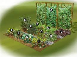 Small Picture Vegetable Garden Design Layout Free Ideasidea