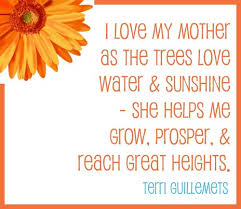 Love Quotes For Mother 100 I Love My Mom Quotes lovequotesmessages 92