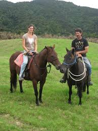 About Us - North River Horse & Humanship Centre