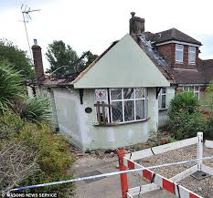 squirrels chew through electrical wires and burn down luxury destroyed the acircpound400 000 bungalow set on fire after squirrels chewed through electric wires in