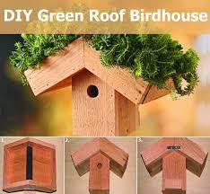 irresistibly cute diy green roof birdhouse