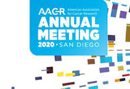 Image result for aacr 2020 logo