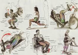 Workout Chart Large Printable Pdf Bodybuilding Legs