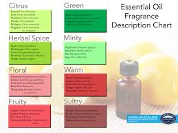 Aromatherapy Scent Chart Blending 101 The Art Of Pairing Essential Oils Drop By Drop