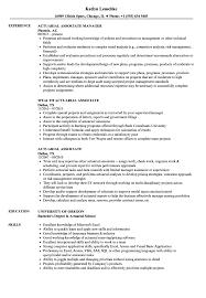 Actuary Resume Actuarial Associate Resume Samples Velvet Jobs 96