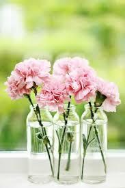 Resultado de imagem para decorar wc flores