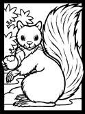 Small Picture Squirrels Coloring Pages