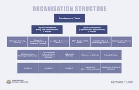 Mha Organisation Chart Sps Organisation