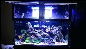 full image for zetlight led review color fluval sea marine fluval sea marine fluval sea marine