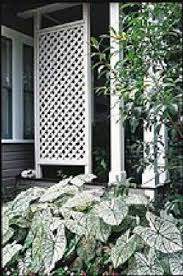 best 25 porch privacy ideas