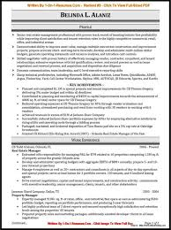Fine Resume Writing Service Dallas Images Entry Level Resume