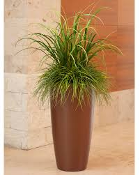 Mixed Artificial Grass Planter for Office Decor at OfficeScapesDirect