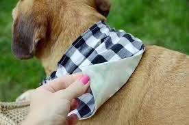 Dog Scarf Pattern Amazing Decorating Ideas