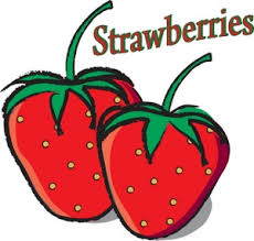 strawberry fruit drawing. strawberry clipart image: drawing of two fresh, ripe strawberries with the text, \ fruit