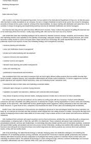 Example Interview Essay Essays About Job Interview Research Paper Sample