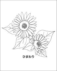 レク素材 夏の花介護レク広場レク素材やレクネタ企画書の無料