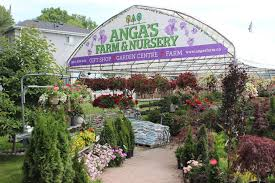 toronto s local farm and plant nursery
