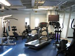 Interior:Modern Basement Home Gym Design Idea Cool Basement Gym Weight  Machines And Contemporary Television