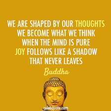 Buddha Quotes On Happiness Interesting Buddha Quote About Thoughts Shadow Mind Joy Happiness CQ