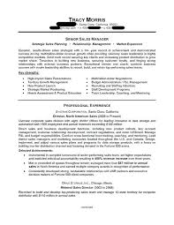 Sales Resume Objective Sales Resumes Examples Sales Professional