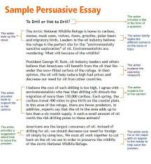 persuasive essay on reading books dissertation literature review  custom essay