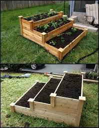 vegetable garden raised beds raised