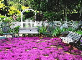 Small Picture Flower Garden Ideas For Full Sun Home Improvement On A Budget