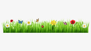 spring flower png images free