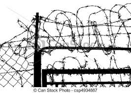 barbed wire fence drawing. Wired Fence With Barbed Wires Wire Drawing T