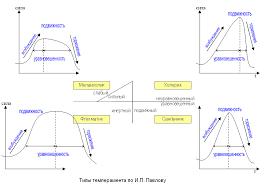 Холерик Сангвиник Флегматик Меланхолик Описание темпераментов Тест  Описание типов темперамента Типы темперамента по И П Павлову