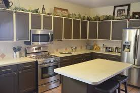 Superb Low Cost Kitchen Renovation Low Budget Kitchen Cabinets Trendy Cost  Remodel Ideas