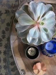 Decoratie En Styling Advies